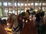 Carousel Chattanooga, TN